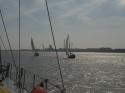 Flotillensegeln auf der Weser