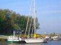 Taucher K und Naja in Rodenkirchen
