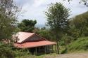 Guadeloupe 2015 - im Wald oberhalb Deshaies