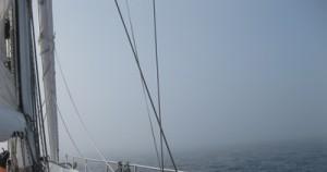 Wie sie sehen, sehen sie so gut wie nichts! Im Nebel unterwegs zwischen Leixoes und Figueira da Foz