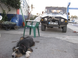 Cajados Jeep bewacht von seinem Hund Masok