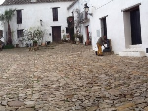 Innerhalb der trutzigen Mauern des Castillo verbergen sich weisse Wohnhaeuser