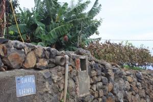 Steinmauern, Bananenpflanzen und Rebstöcke - unterwegs im Gebiet Tacoronte
