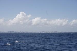 Land in Sicht - die Skyline von Salvador do Bahia rueckt unaufhaltsam naeher