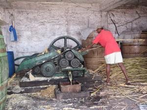 Zuckerrohrpresse - hier wird noch ganz traditionell Crogue produziert