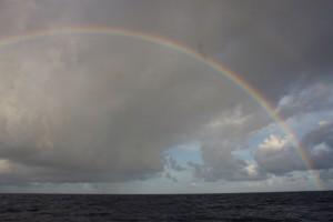 Aus dem Wasser aufsteigend und nach einem perfekten Bogen in den Himmel wieder im Atlantik versinkend - traumhaft schoen