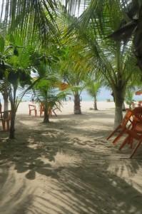 Unter Palmen - Bierpause am Strand von Cabedelo