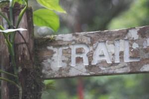 Gefuehrte Tour oder freier Trail - beides ist moeglich im Asa Wright Nature Centre