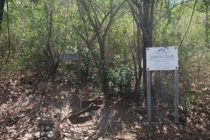 Verlaufen unmoeglich - der Trail zum Shirley Heights Lookout ist super ausgeschildert