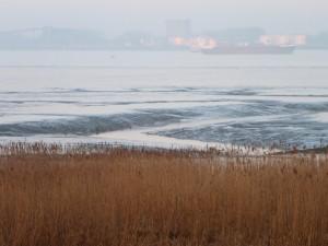 Ebbe an der Weser im Morgenlicht