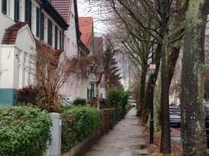 alte Häuser, alte Bäume
