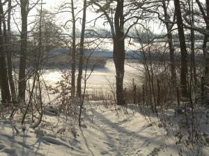 Dezember 2010 - ein Wintertraum zwischen Daverden und Cluvenhagen