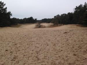 Weite Sandflächen, auf und ab - sind wir denn am Meer?