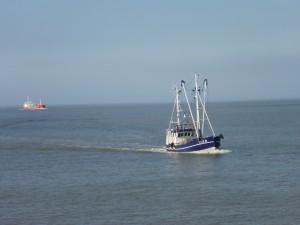 Fischerboote kehren in den Hafen zurück