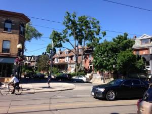 Klein-Italy in Toronto