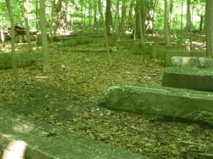 Überwachsen - nur noch Reste, Fragmente des früheren Vergnügungsparks hier am Erie See sind noch zu sehen. Die Natur holt sich alles zurück