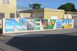 Welcome to Nevis.JPG