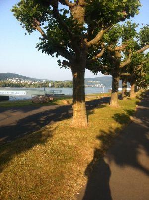 Foto 1 (2).JPG