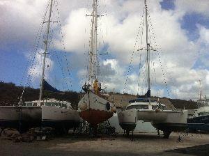 Curacao Marine 15102015 (3).JPG