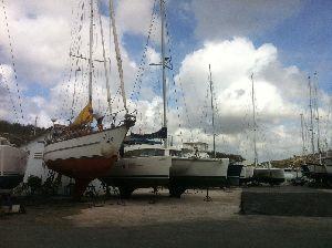 Curacao Marine 15102015 (4).JPG