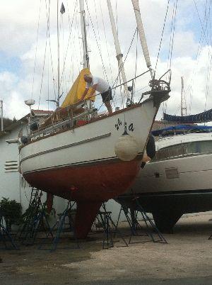 Curacao Marine 15102015 (5).JPG